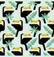 tukan and leaves of palm flat pattern vector image