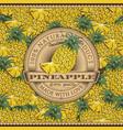 vintage pineapple label on seamless pattern vector image