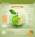 Apple infographics template design vector image