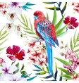 Tropical bird pattern vector image