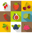edible fruit icons set flat style vector image