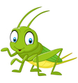 Cartoon funny cricket vector image