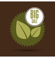 big sale food healthy vegan vector image