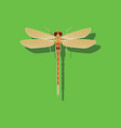 paper sticker on background of dragonfly vector image