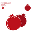 Pomegranate Set vector image