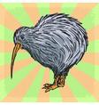 kiwi bird vector image vector image