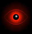 red eye ball vector image