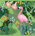 summer tropical background flamingo bird with vector image