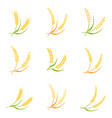 ear spike logo badge icon wheat isolated vector image