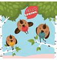 Greeting card with birds and trees vector image vector image