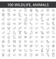wildlife african sea domestic forest zoo vector image