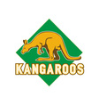 kangaroo sports mascot shield vector image vector image