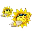 Hot surfing sun with sunglasses vector image