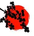 Silhouette sakura branch in background of the sun vector image