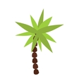 Palm summer tree tropical beach vector image