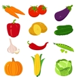 Set of colorful cartoon vegetables icons isolated vector image
