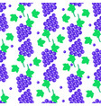 seamless pattern with grapes bundles and leaves vector image