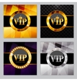 Abstract Luxury Background Set vector image vector image