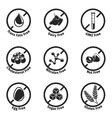 dietary labels vector image