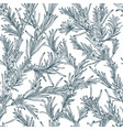 natural seamless pattern with outline rosemary vector image