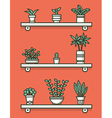 Set of houseplants in pots on shelves vector image