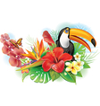 Red hibiscus toucan and tropical flowers vector image