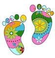baby feet painted silhouettes vector image