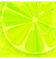 Lime grunge background vector image