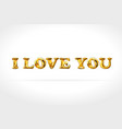 I love you gold balloons golden characters vector image