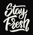 stay fresh hand drawn lettering vector image