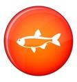 Rudd fish icon flat style vector image