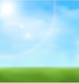 Background spring grass in sun light vector image