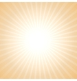 sun light background vector image