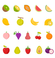 Color icon set - Fruits vector image vector image