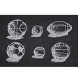 Ball sketch set with shadow on the ground on vector image