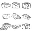 set of cheese isolated on white background design vector image
