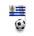 Soccer Balls or Footballs with flag of Uruguay vector image