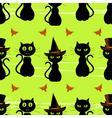 halloween cats vector image