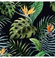 Tropicpattern10 vector image
