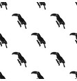 Brazilian toucan icon in black style isolated on vector image