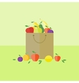 Card with fruits in flat style vector image