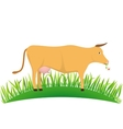 cow on the lawn vector image