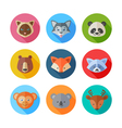 Cute flat animals portraits icons vector image