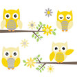 Cut Owl with Branches Yellow and Grey Owl vector image