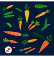 Healthy carrot and cucumber flat vegetables vector image