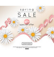 Spring sale banner with realistic daisy vector image