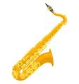 flat design colored copper brass alto saxophone vector image