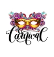 carnival mask silhouette with ornamental floral vector image