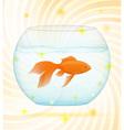 gold fish 02 vector image