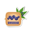 Blueberry Bright Color Jam Label Sticker Template vector image